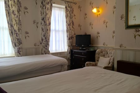 Private En-Suite Twin Room close to Stonehenge - Apartment