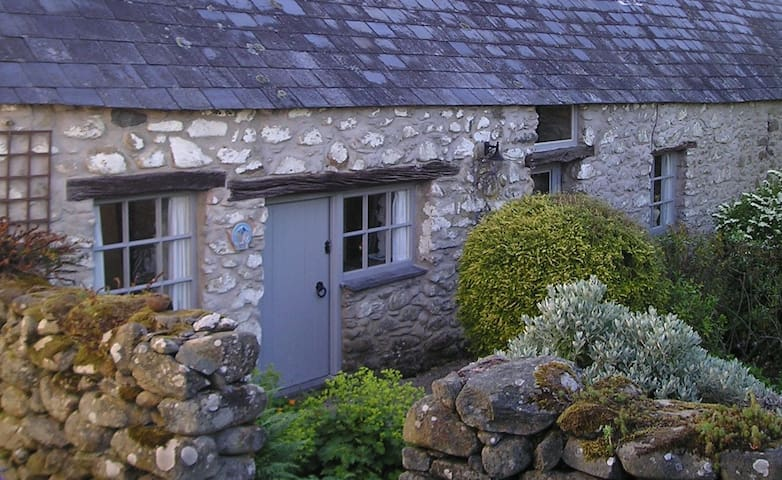 Characterful 17th Century Barn Conversion - Llanbedr-y-cennin - Annat