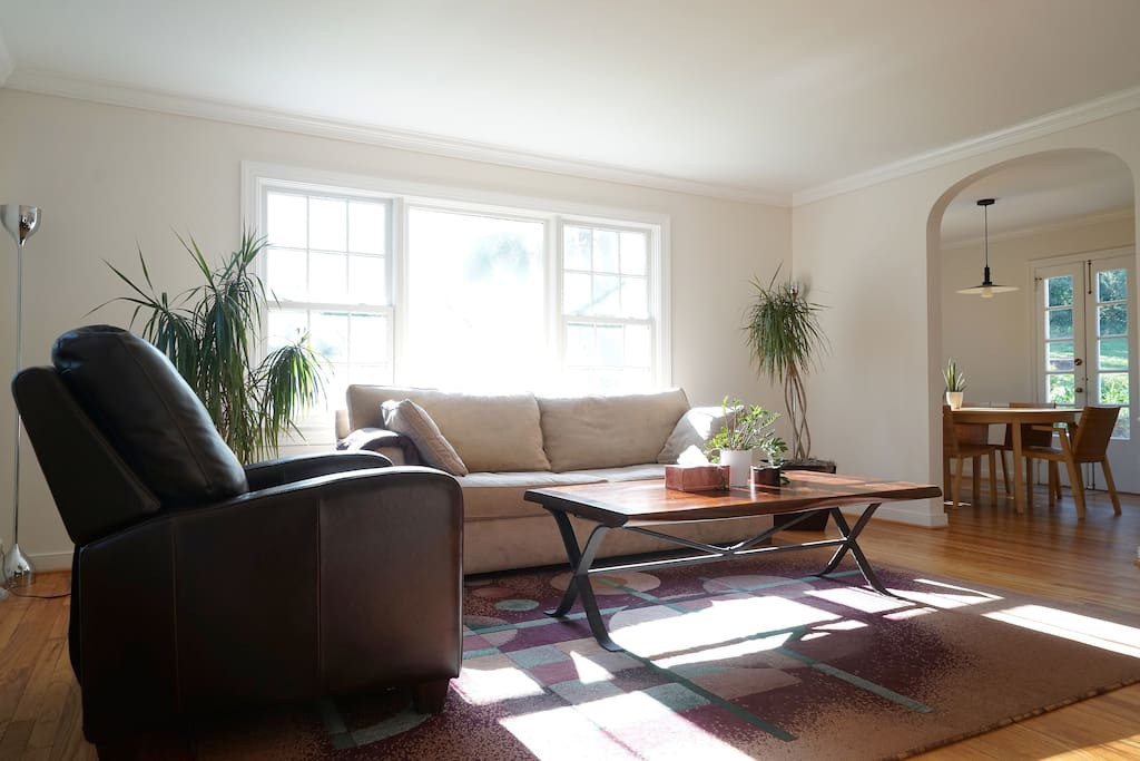 Living room. Yup -lots of light!