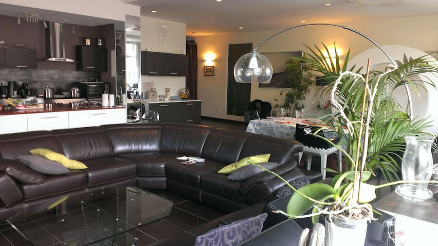 bel appartement  proche centre strasbourg - Schiltigheim - Loft