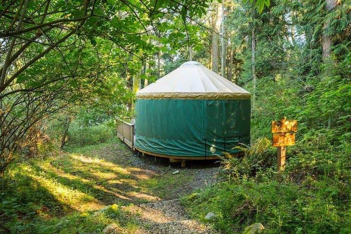 Yurt 5 - 20'