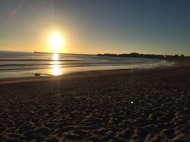 Vislumbre o Atlântico ao acordar, a 50m da praia