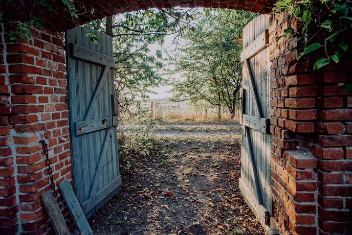 Ein weiteres Tor bringt Euch zu unseren Schafen und zu den Streuobstwiesen.