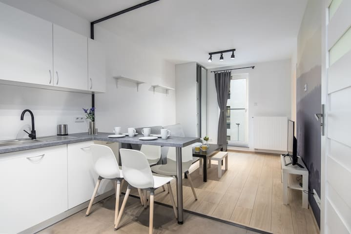 /Modern apartment in a fancy district of Krakow