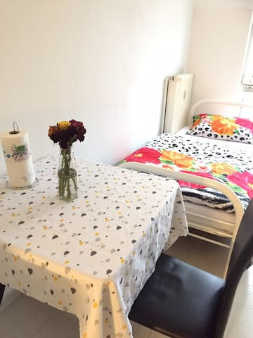 Nice Flat, Main-station/centrum 9min by foot,Wifi