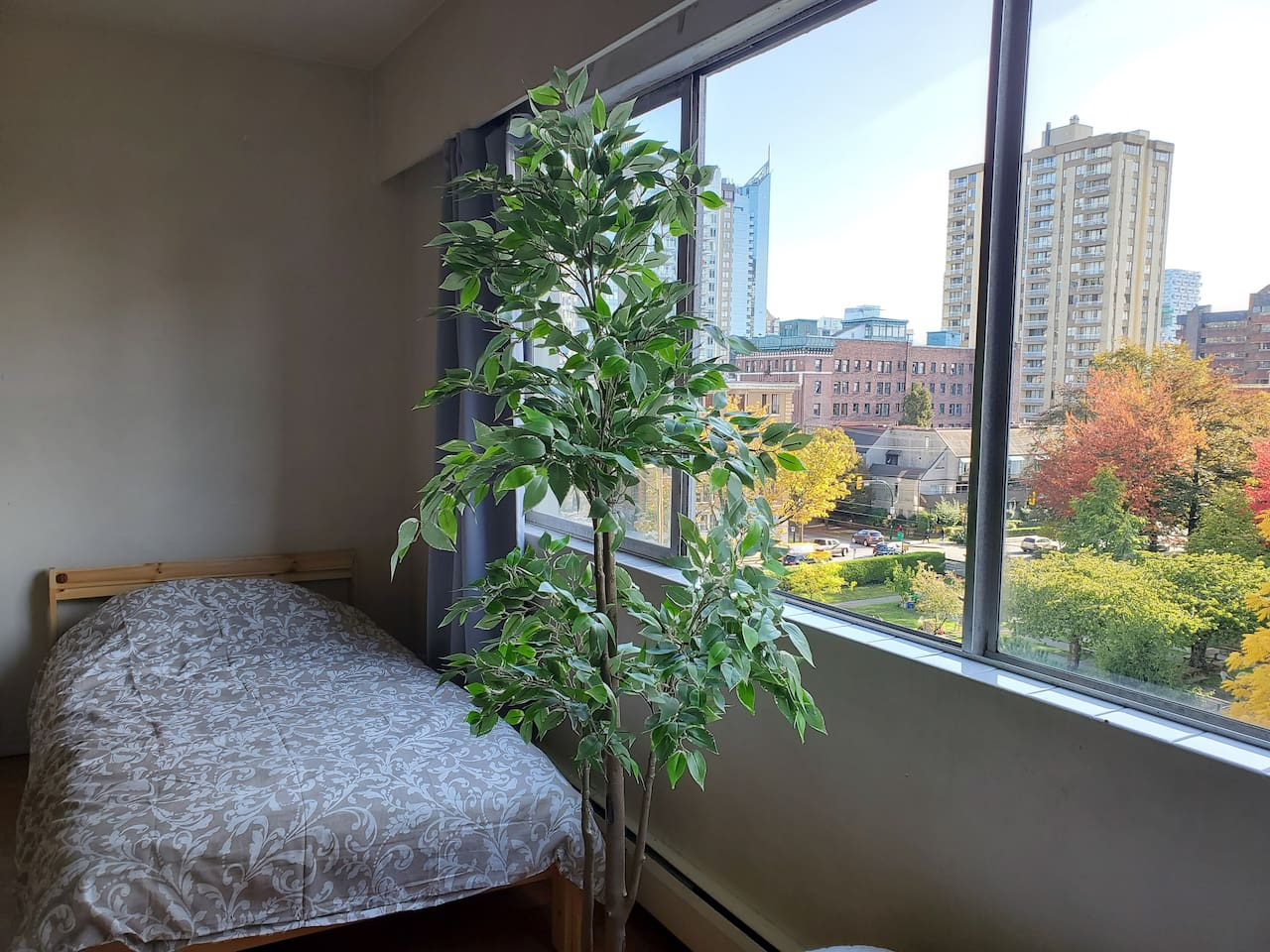 Comfortable single bed with window view