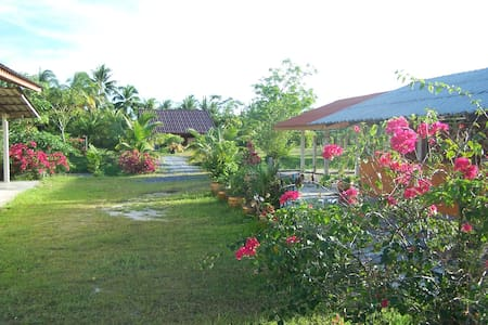Cocunut Valley - Bed & Breakfast