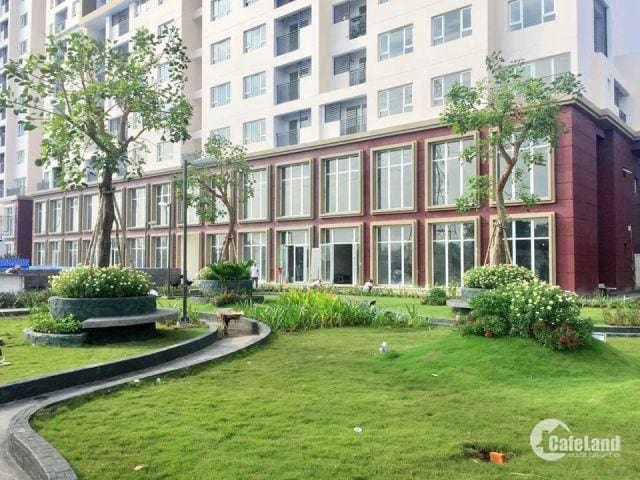 FOR RENT The Park Residence Apartment 2BR + 2WC