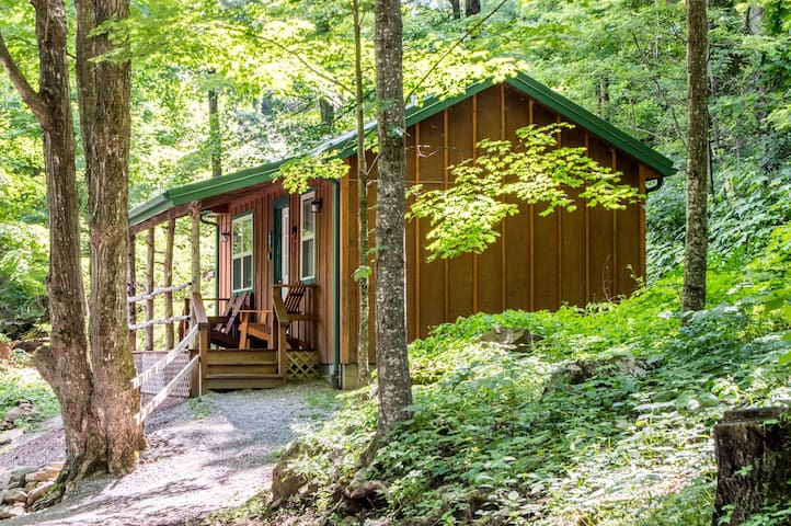 Cozy Cottage, Spruce Knob-Seneca Rocks Area!