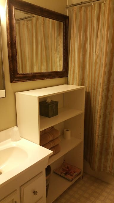 Bathroom with shower/bath and all the amenities!