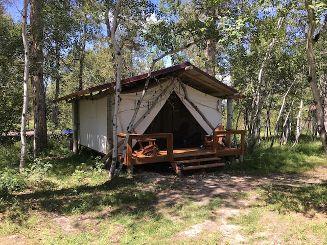 Quaking Aspen Ranch, Moose, Glamping Cabin