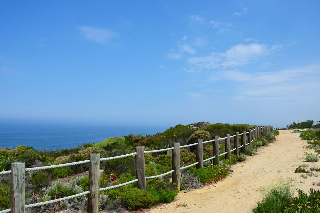 Costa Vicentina: Nature at its best!