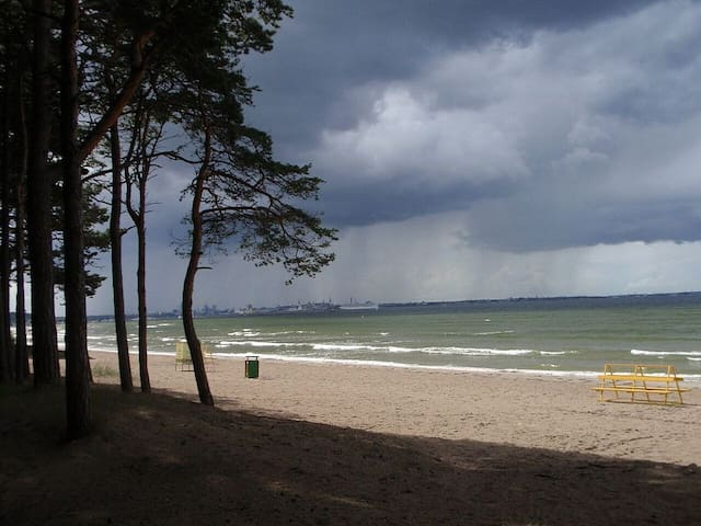 Cozy beach side apartment - Tallinn - Apartmen