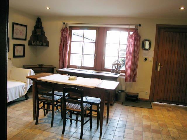 La Perle du Ried - la petite maison du village - Boofzheim - Alojamento na natureza