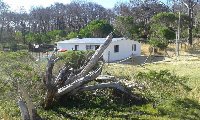 Biarritz- Cuchilla Alta  ideal para vacacionar