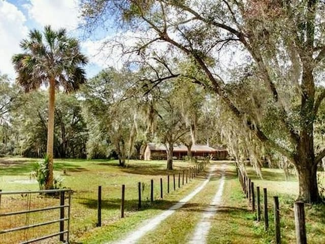 Rural Log cabin, acres of beautiful Deleon Springs