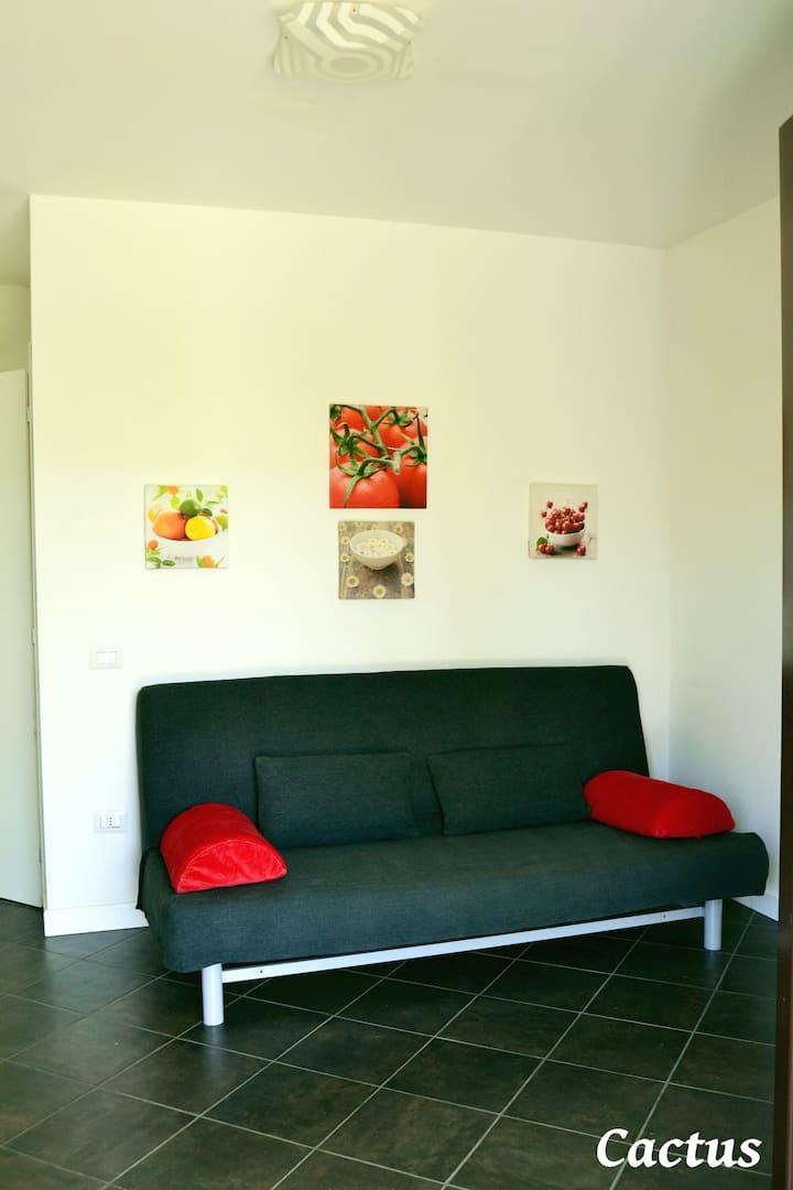 Cactus: appartement dans une villa avec piscine