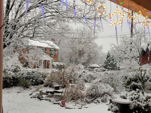 Snowy view from my veranda, Dec 2017