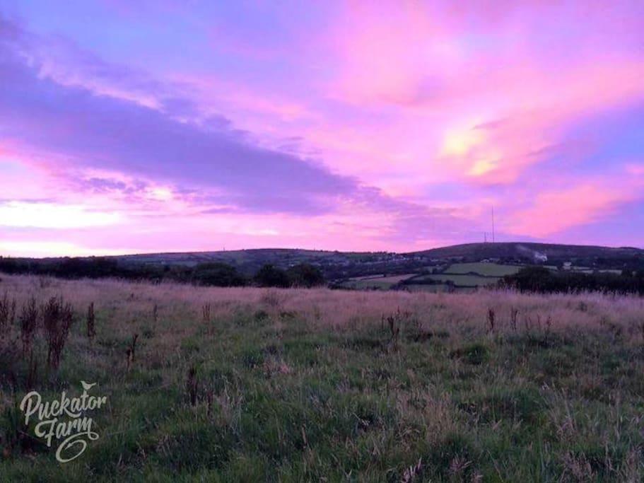 Sunset at Puckator Farm