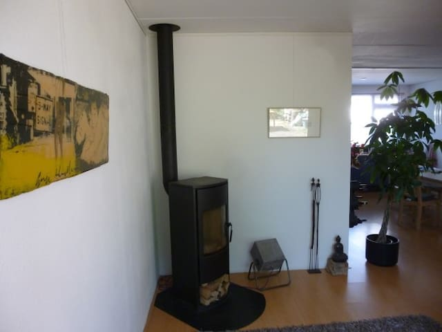 Living room with furnace.