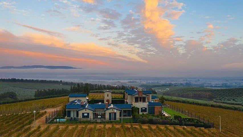 Mountain and vineyard views in Paarl