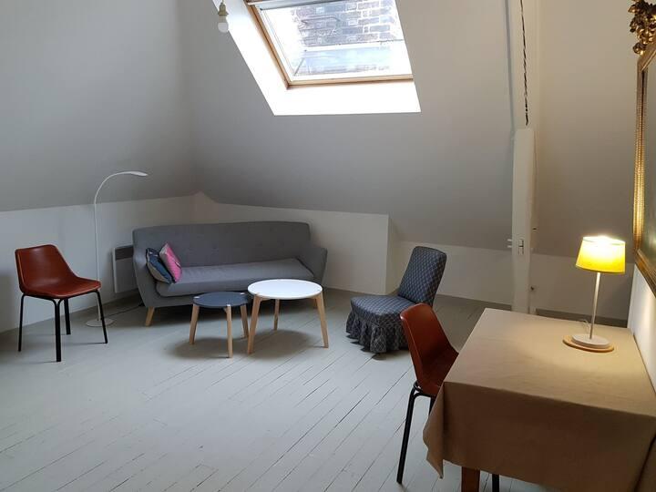 Studio refait à neuf, proche centre ville