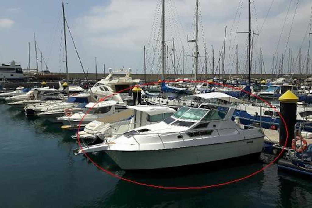 Boat exteriors views.