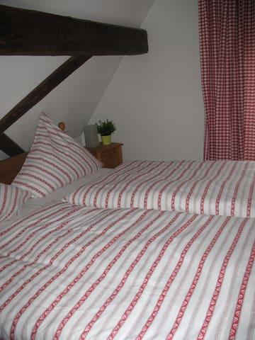 DG-Zimmer 1 im alten Fachwerkhaus - Bodenheim - Rumah