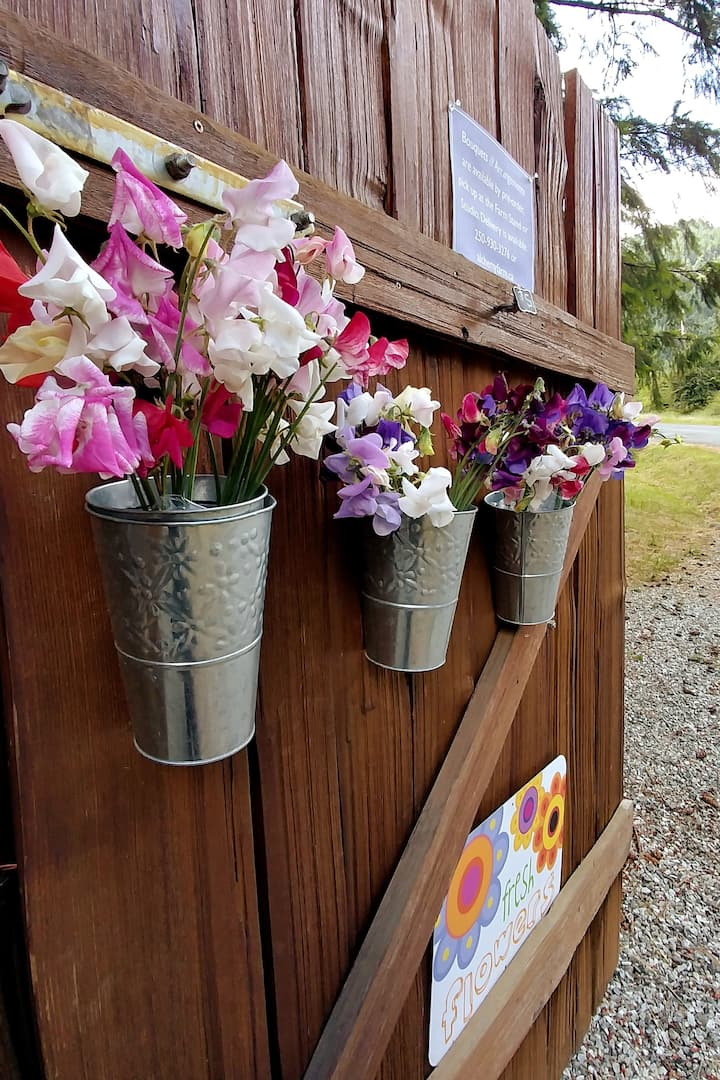 Sweet Peas in the Farm Stand