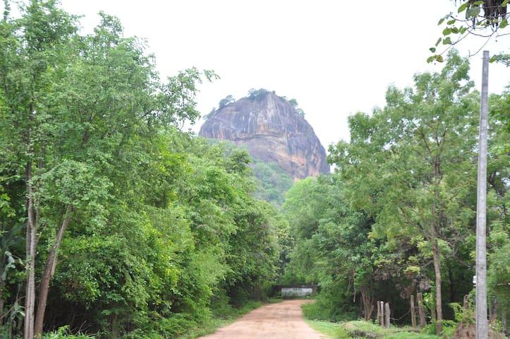 Thal Sewana - Sigiriya - Guesthouse