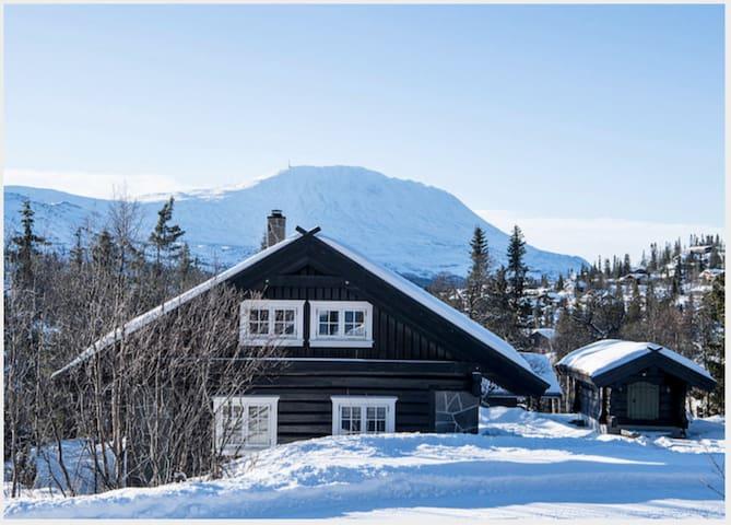 Solrik hytte i Vatnedal/Gaustablikk