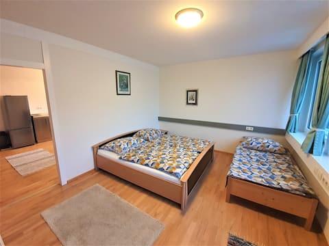 Apartament - TOP 2 - Chez Tom Nenzing