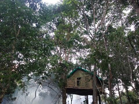 Bamboo House in Kodaikanal