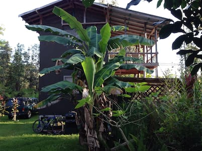 Room type: Private room Property type: Cabin Accommodates: 3 Bedrooms: 1 Bathrooms: 1