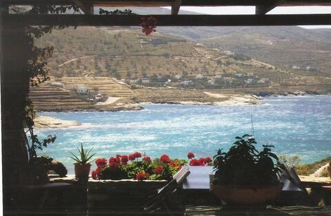 Seaside villa 350m from Koundouros Beach