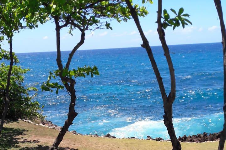 Vista del jardin: el Mar Caribe