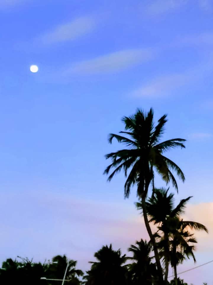 Dias de paz, sol e praia tranquila