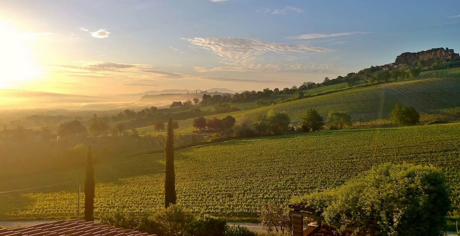 Luxury B&B on the Palazzone Winery Estate - Orvieto - Bed & Breakfast