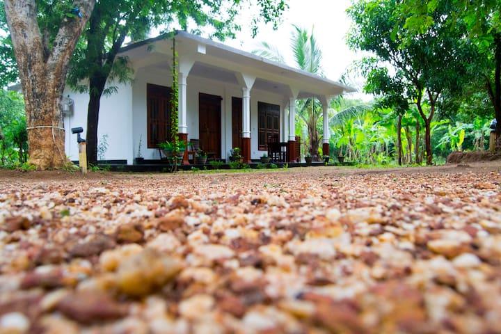 sigiriya flower guest - Sigiriya - Rumah Tamu