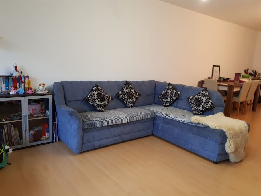 LIving Room. Sofa can be converted into a Double Bed.