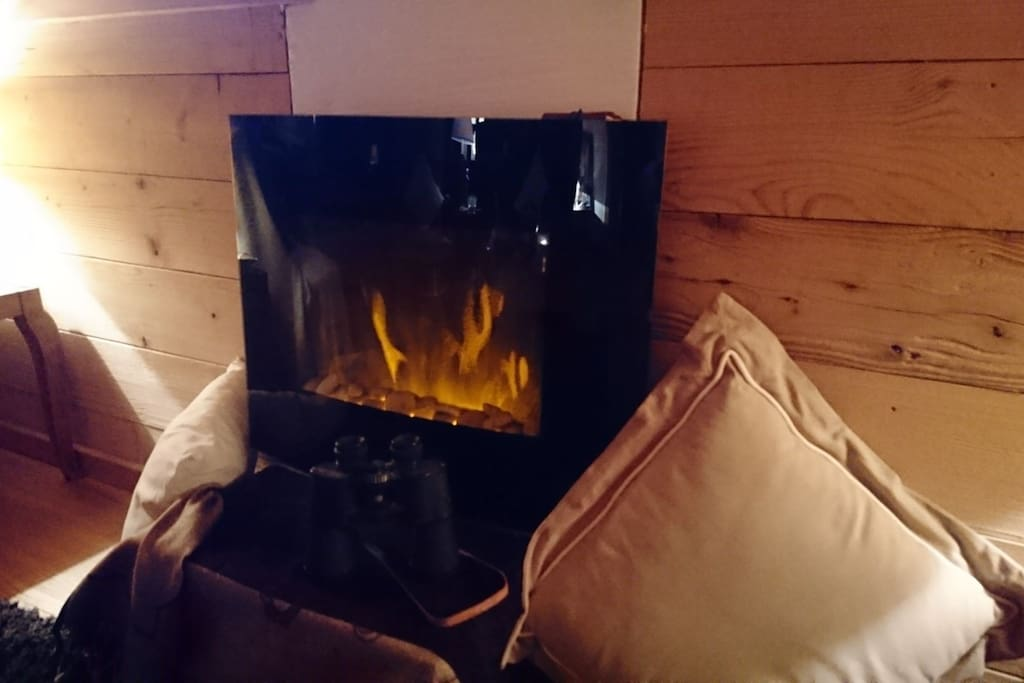 The hightech electric fireplace.