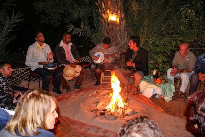 Bivouac et Tentes berbère à l'oasis de Fint - Ouarzazate - Telt