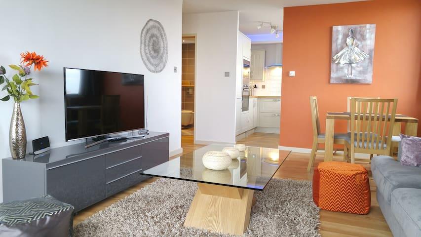 31 Stunning apartment- East Croydon