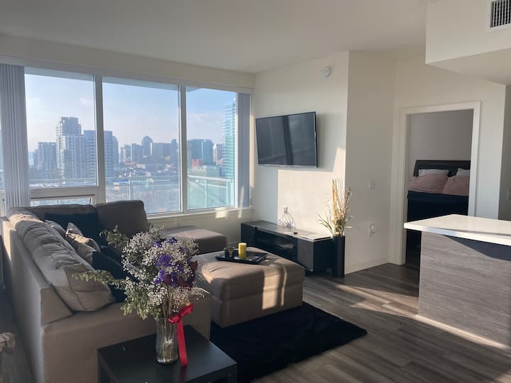 2 bedroom apt with Amazing views of Downtown SD
