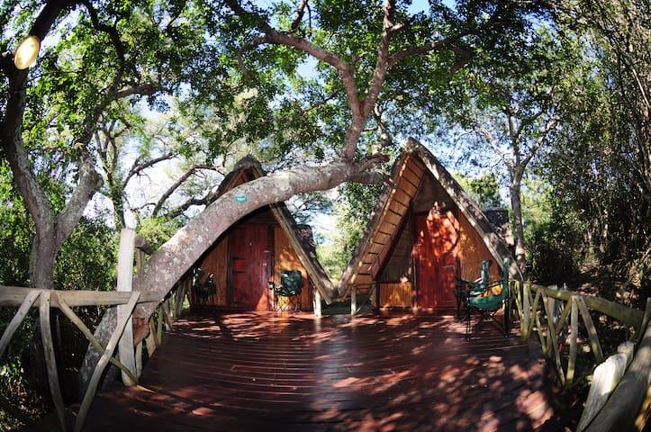 Panzi Bush Camp - Hoedspruit