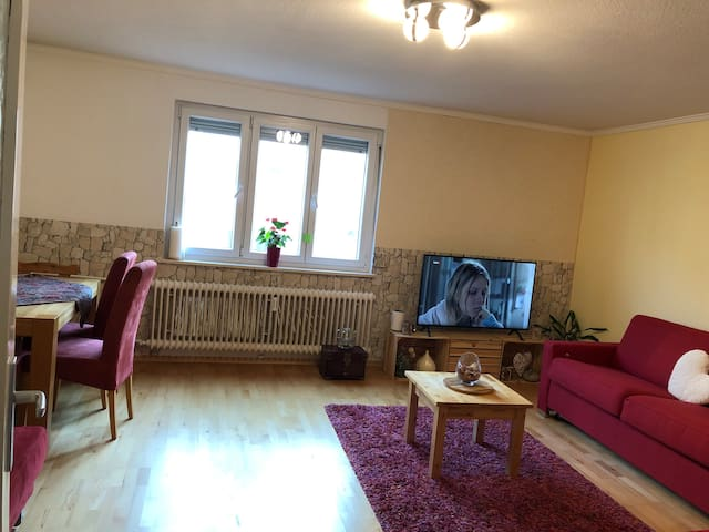 Big and bright room in central located apartment