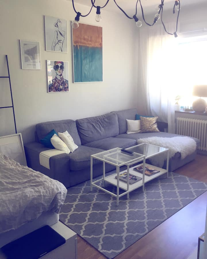 6 MONTH LEASE (OR LONGER) - BRIGHT&AIRY 1ROOM APT.