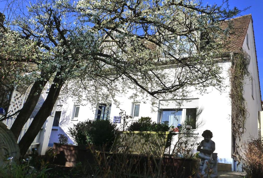 Ferienhaus mit 4 separaten Apartments