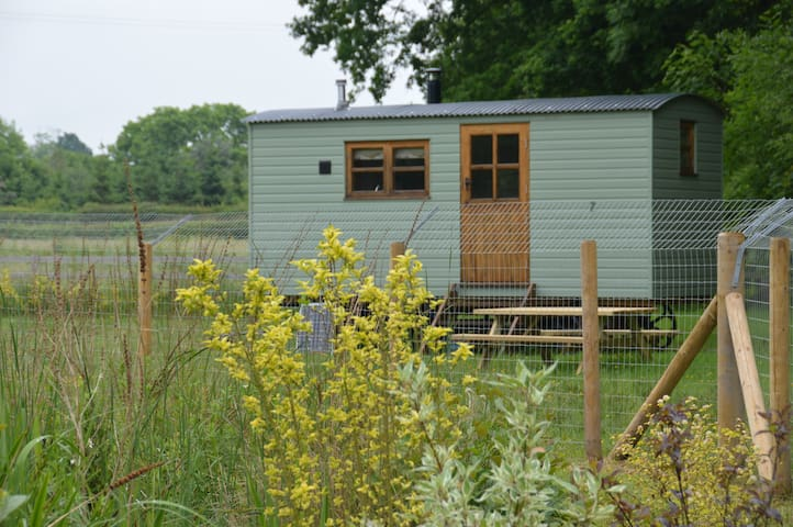 The Shepherds Hut - Kinnerley - Hut