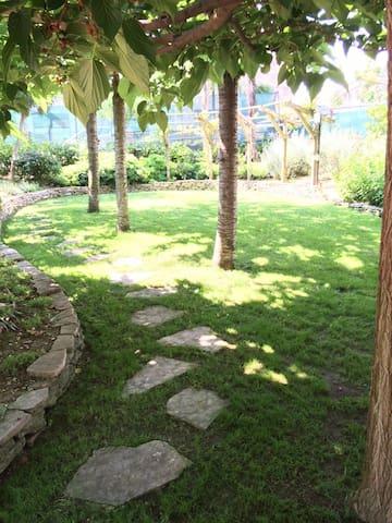 Appartamento con ampio giardino - San Benedetto del Tronto - House